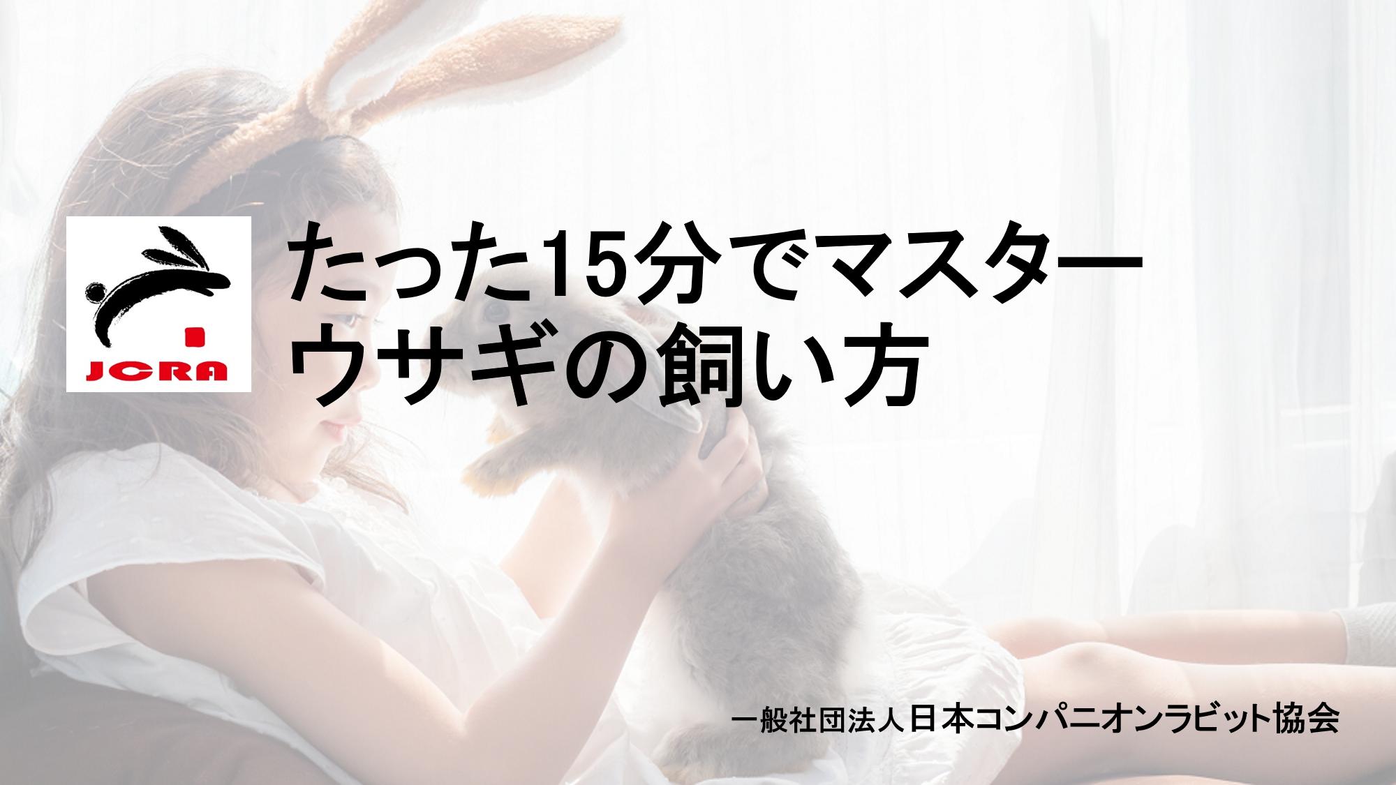 ウサギの飼い方